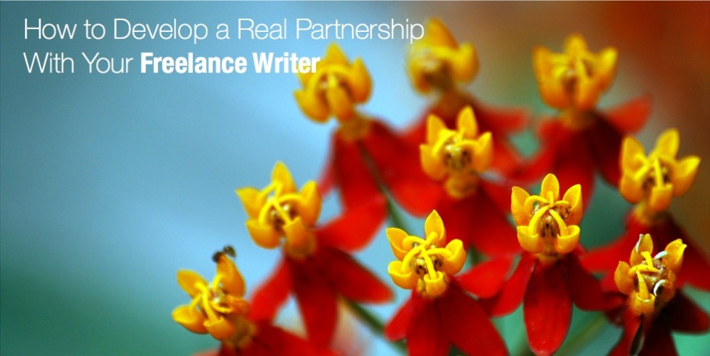 How to Develop a Real Partnership with your Freelance Writer