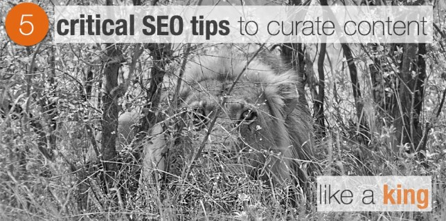5 critical SEO tips to curate content like a king