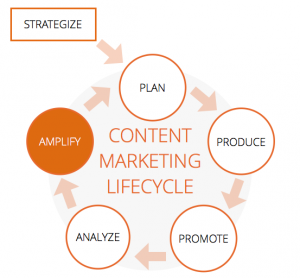 how to amplify your content phase 6