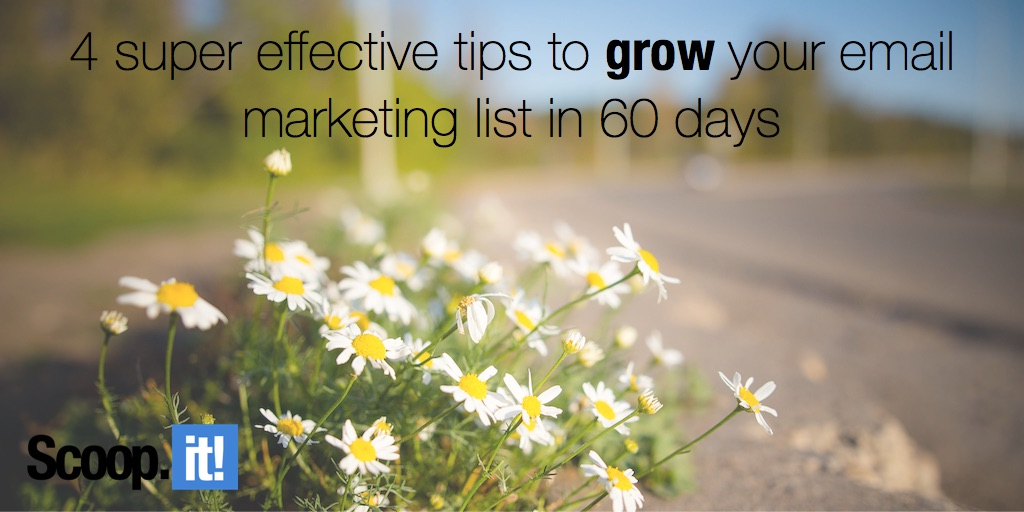 4 super effective tips to grow your email marketing list in 60 days