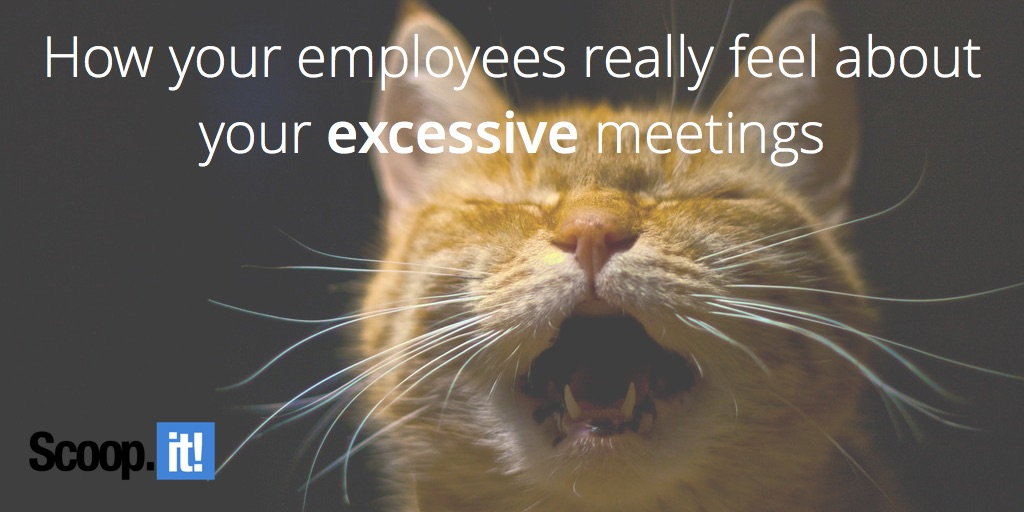 how your employees really feel about your excessive meetings