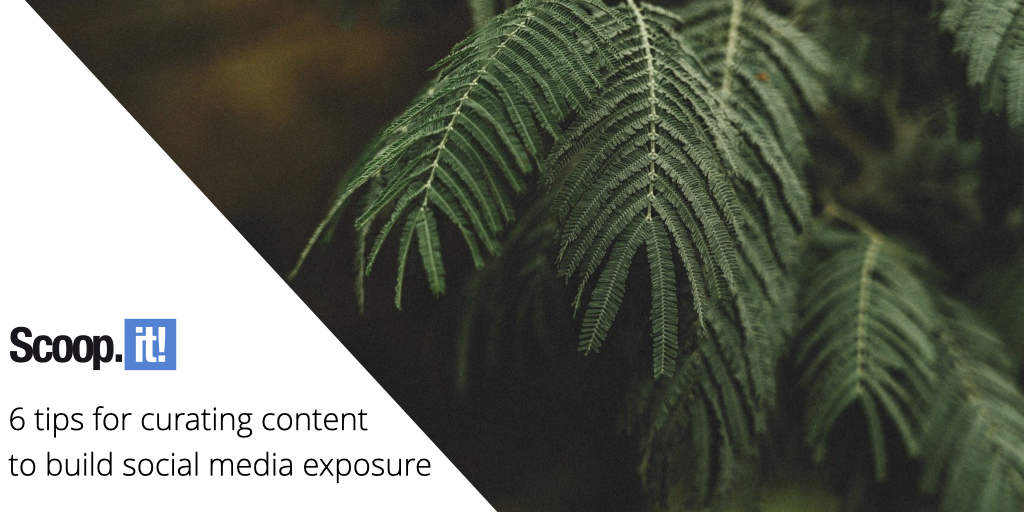 6 Tips for Curating Content to Build Social Media Exposure