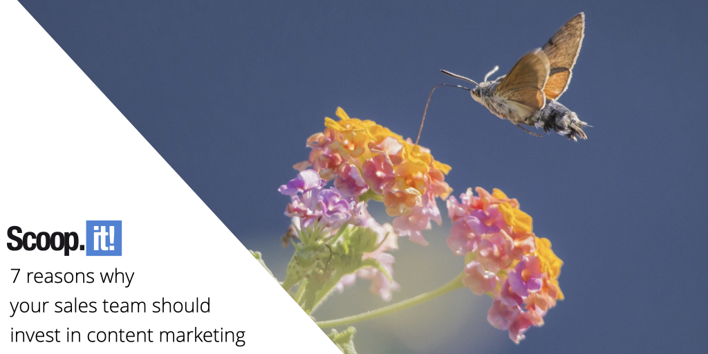 7 Reasons Why Your Sales Team Should Invest in Content Marketing
