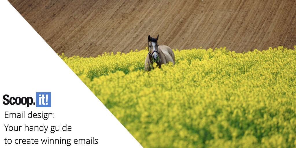 Email Design: Your Handy Guide to Create Winning Emails