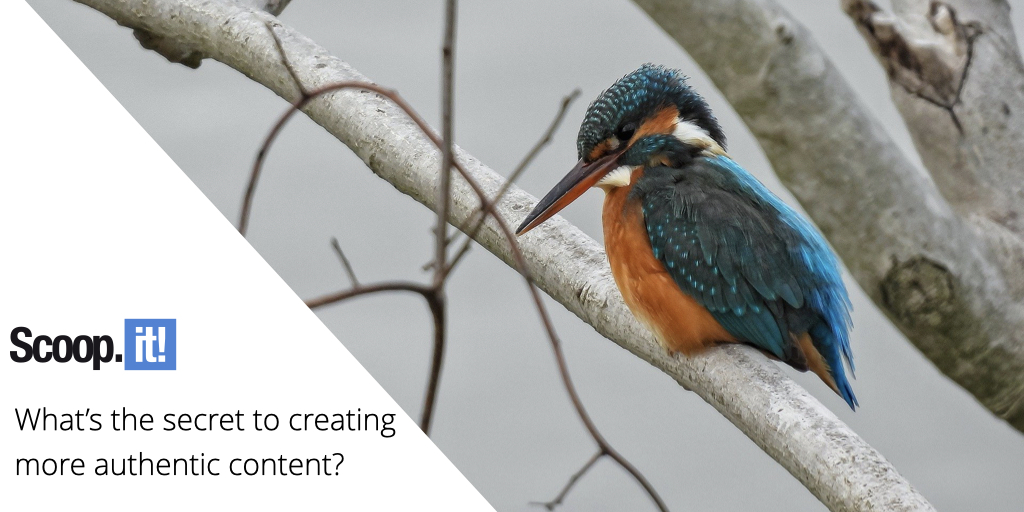 What's The Secret to Creating More Authentic Content?