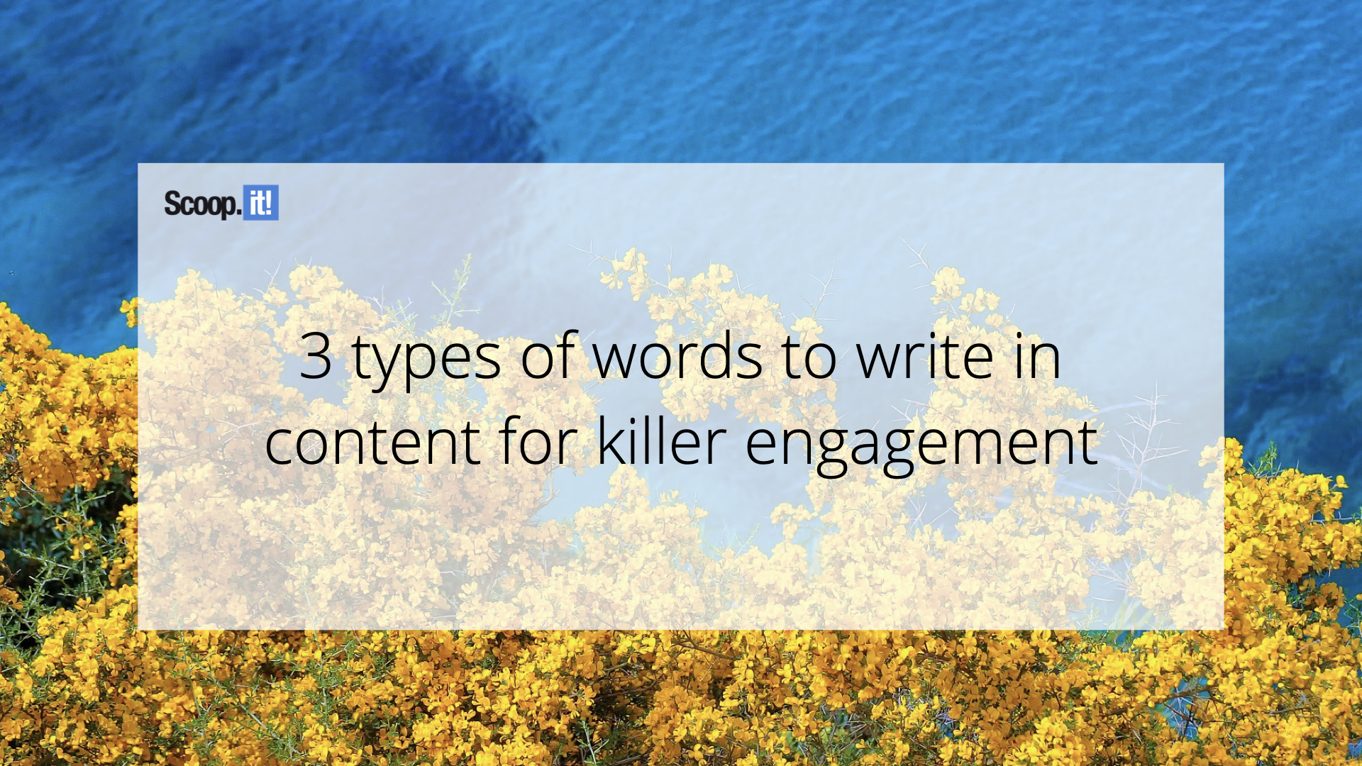 3 Types of Words to Write in Content for Killer Engagement