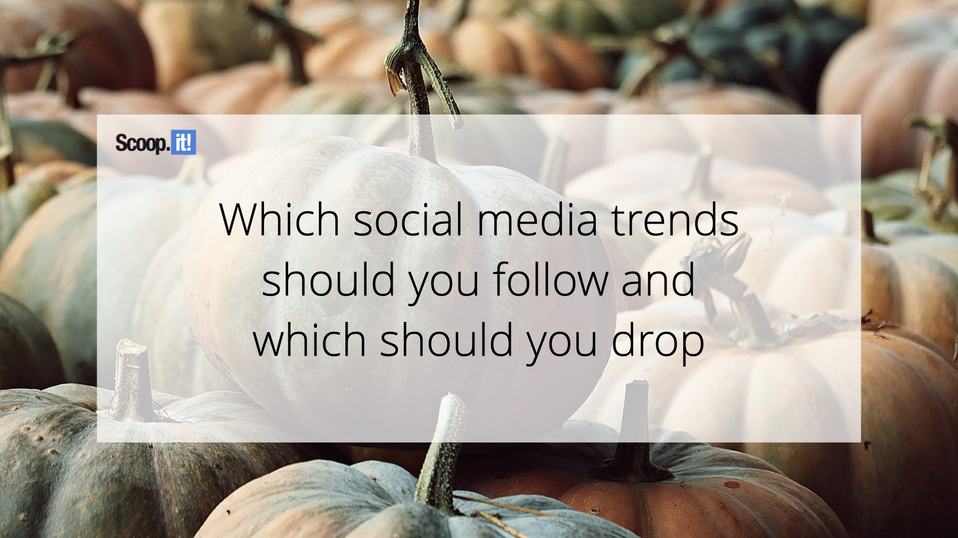 Which Social Media Trends Should You Follow and Which Should You Drop